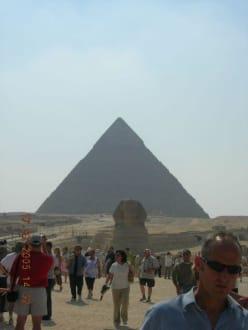 Sphinx usw. - Sphinx von Gizeh