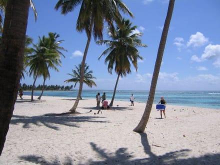 einsamer Strand auf Saona - Isla Saona