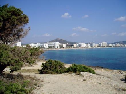 Noch mal die Bucht von Cala Millor - Strand Cala Millor