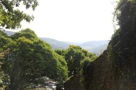 Engelberg großheubach parken kloster Startseite