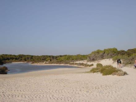 Weg zum Strand - Platja Es Trenc