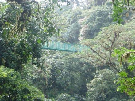 Sky-Walk Monteverde - Nebelwald-Reservat Monteverde