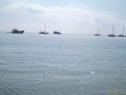 Blick aufs Meer - Strand Palma Nova