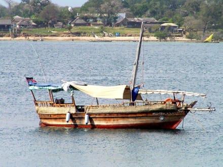 Das Boot! - Delfin Tour Diani Beach