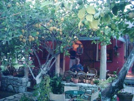 """Taverne """"Lemon Garden"""" - Lemon-Garden (Restaurant)"""