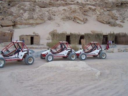 Speeddevils - SpeedDevils Tour El Gouna