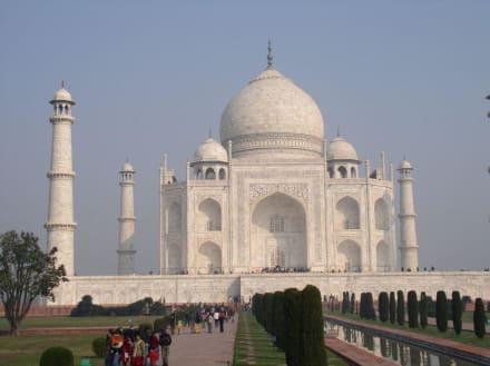 Taj Mahal am Morgen - Taj Mahal
