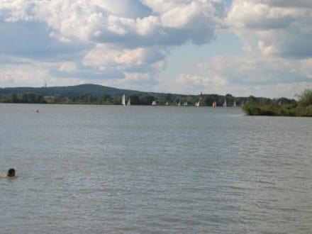 Altmühlsee im September - Altmühlsee