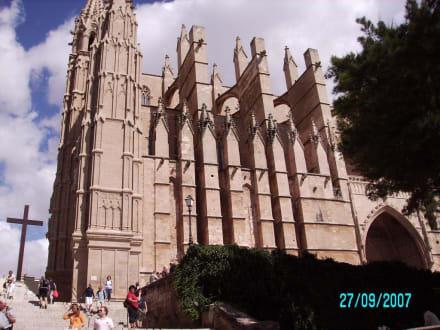 Teil des Kirchenschiffes - Kathedrale La Seu