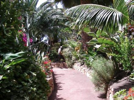 Im Oasis Park in La Lajita - Oasis Park