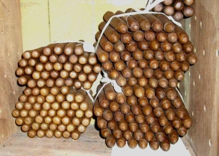 Reynaldos selbstgedrehte Cigarren - Zigarren von Reynaldo