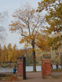 Burg/Palast/Schloss/Ruine - Zarendorf/Zarskoje Selo / Katharinenpalast mit Parkanlage