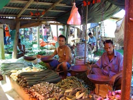 Markttag - Fischmarkt