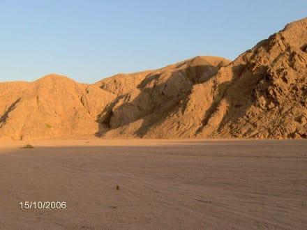 Endlose Wüste - Quad Tour Marsa Alam