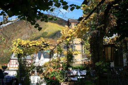 Weinumrankte Terrasse - Hotel Haus Lipmann
