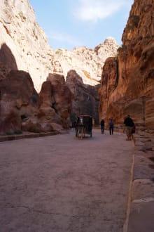 Pferdekutschen als Transportmittel - Felsenstadt Petra