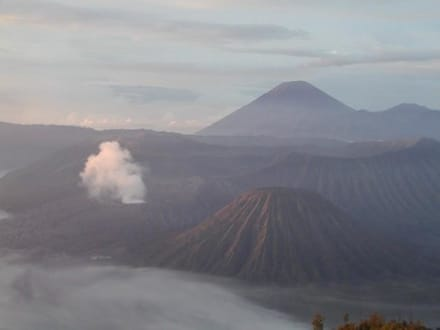 Blick auf Mt. Bromo - Bromo Vulkan