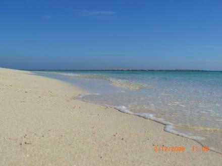 Strand wie in der Karibik - Giftun / Mahmya Inseln
