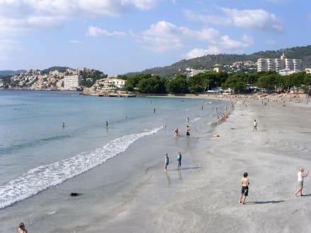 Strand in Paguera - Strand Paguera/Peguera