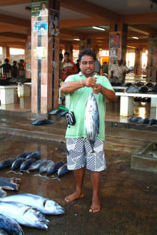 Market/Bazaar/Shopping center  - Negombo Fish Market