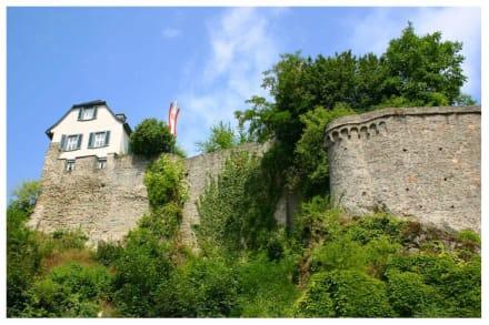 Burg Eppstein - Burg Eppstein