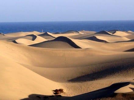La Dunas Maspalomas - Dünen von Maspalomas