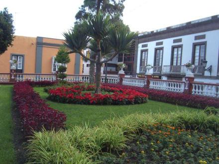 Schöne Bepflanzung - Parque del Drago
