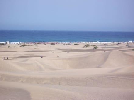 Dünenlandschaft Playa del Ingles - Dünen von Maspalomas