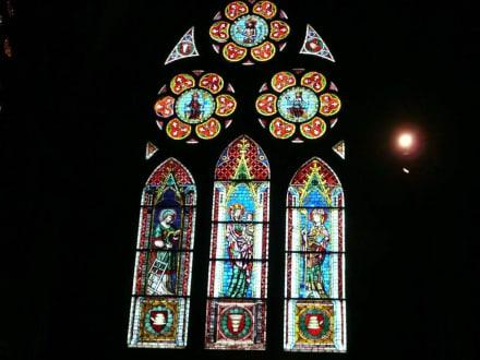 Kunstvolle Fenster im Freiburger Münster - Freiburger Münster