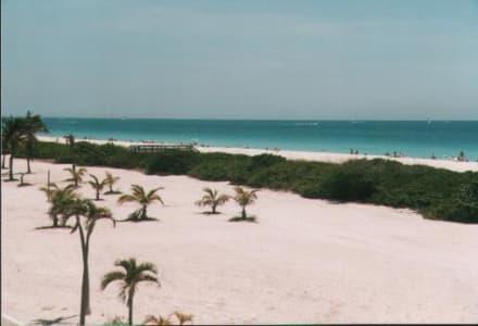 Miami Beach - South Beach - Ocean Drive