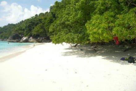Einfach toll - Similan Islands