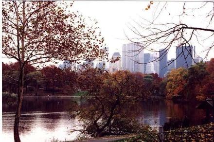 New York-Central Park - Central Park