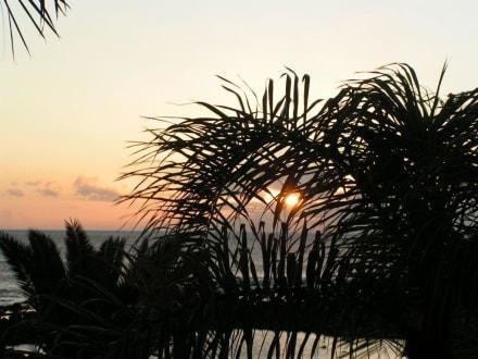 Sonnenuntergang ... - Landschaft im Valle Gran Rey