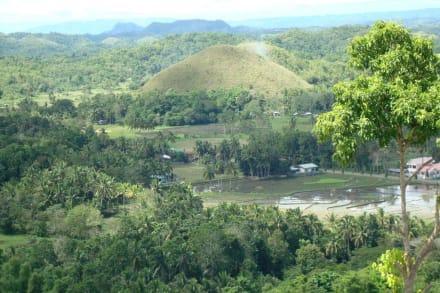 Wunderbare Natur - Chocolate Hills
