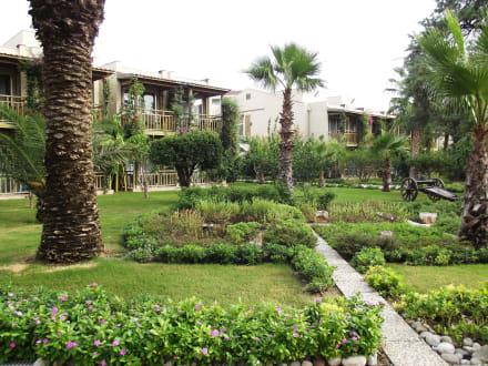 Bungalows - Paloma Oceana Resort