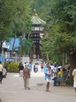 Blick in einen Teil der weitläufigen Anlage - Tiger Cave Tempel (Wat Tham Sua)