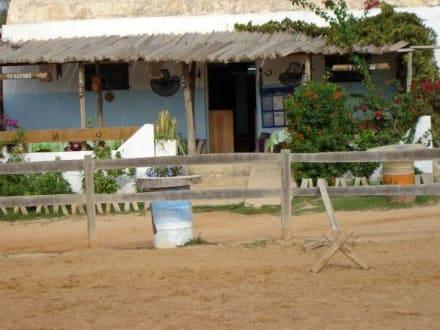 Die Reiterbar - Ranch Mabrouka