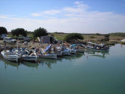 Einfahrt zum Fischerhafen am Piratennest - Piratennest