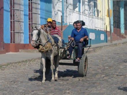 Pferdewagen - Altstadt Trinidad
