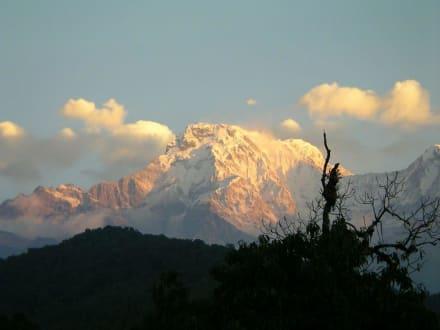 Sonnenaufgang über Annapurna Süd - Trekking Team PVT. LTD Katmandu