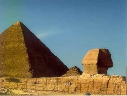 Pyramiden und Sphinx - Sphinx von Gizeh
