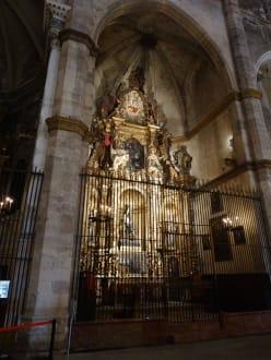 Tempel/Kirche/Grabmal - Kathedrale La Seu