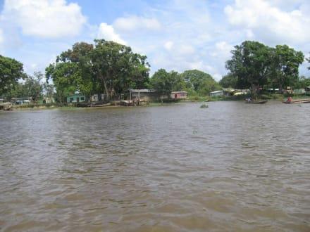 Aguas (río/lago/catarata) - Delta del Orinoco