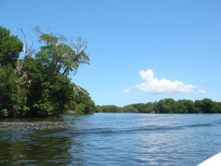 Laguna Restinga - La Restinga