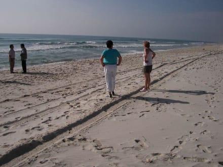 Strand der Einheimischen! - Le Nomade (Berbertour)
