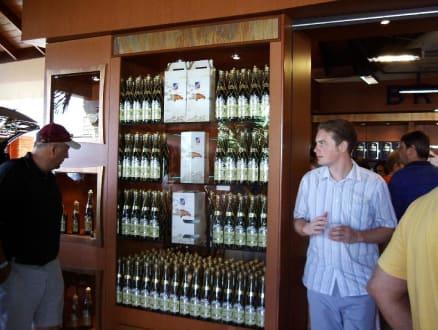Rumfabrik Brugal - Rumfabrik Brugal
