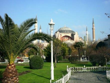 Frühling - Hagia Sophia / Ayasofya