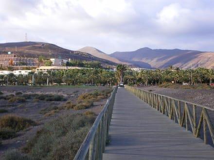Blick vom Strand Richtung Jandia - Strand Jandia
