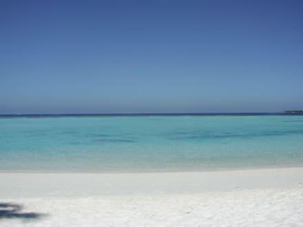 Ohne Worte - Strand Süd-Malé-Atoll