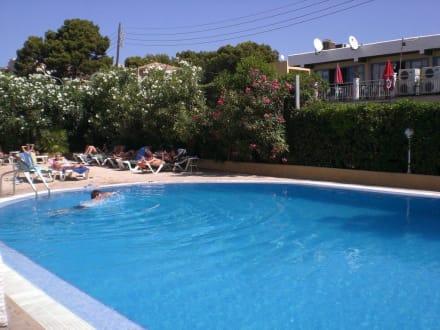 Schwimmpool vorne bild hotel bellamar bella mar in for Schwimmpool angebote